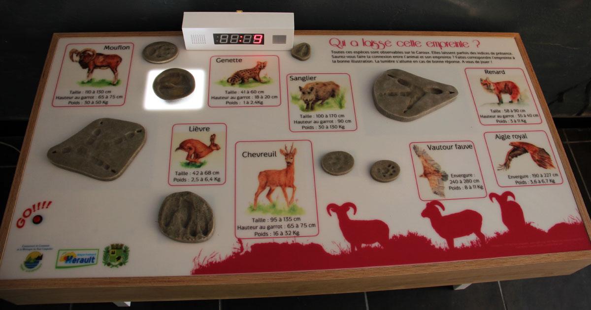 Rosis. Maison du mouflon et du caroux. Table interactive