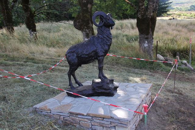 Rosis en Languedoc. Mouflon de Douch
